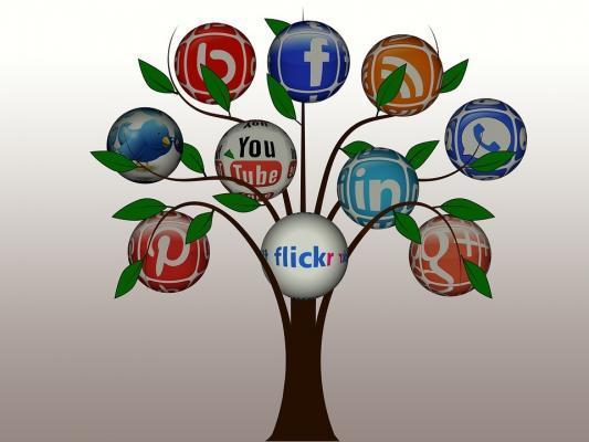 arbre de réseaux sociaux